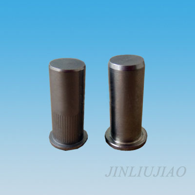 Closed end flat head round body riveting nut