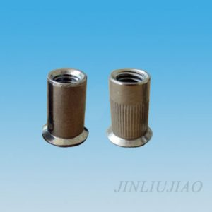 Countersunk head round body riveting nut