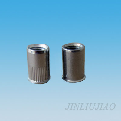 Extra-small head round body riveting nut