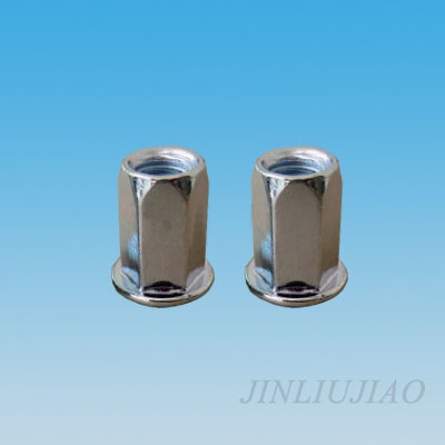 Flat head hexagonal riveting nut