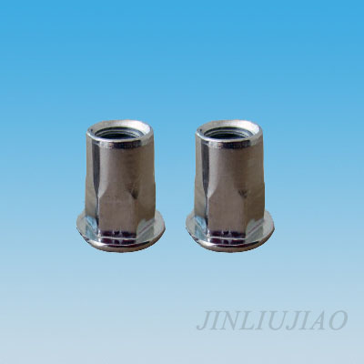 Flat head part hexagonal body riveting nut