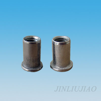 Flat head round body riveting nut