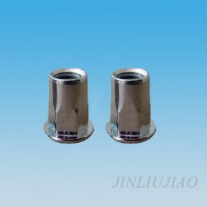 Large dome head part hexagonal body riveting nut