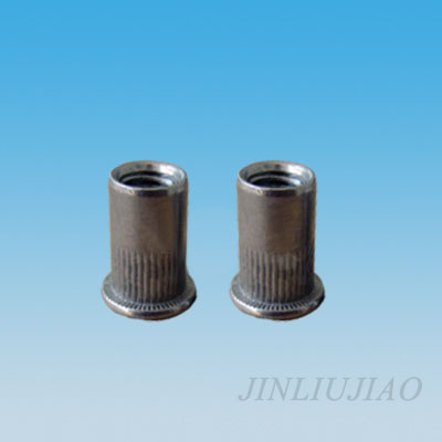 Large dome head round body riveting nut