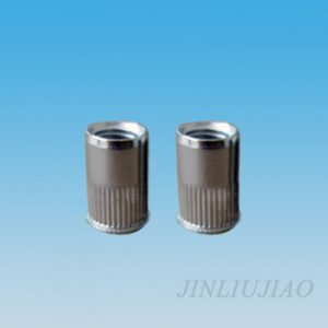 Small dome head round body riveting nut
